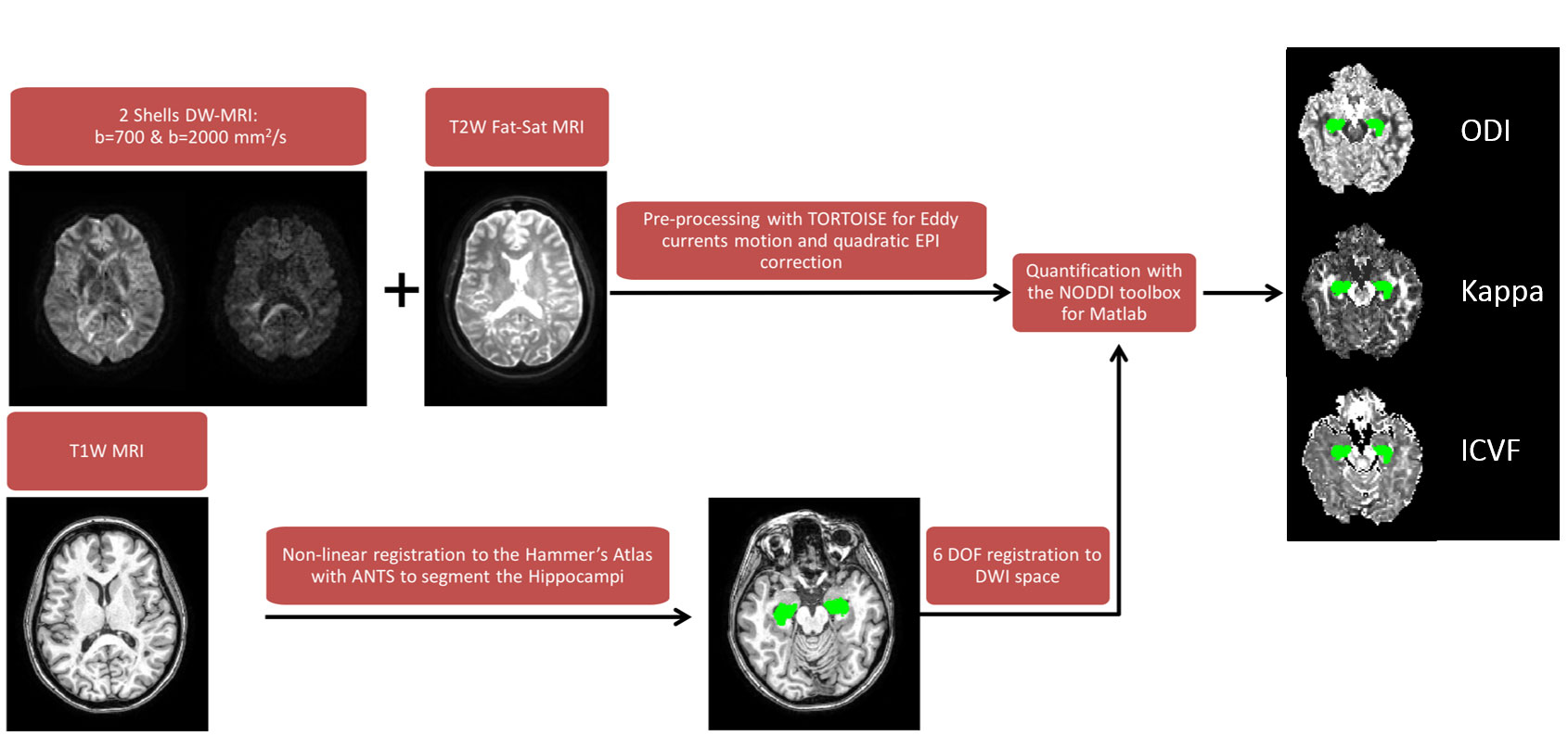 Quantitative Magnetic Resonance Imaging – FAIR – Functional and